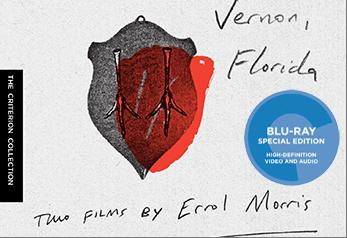 Vernon Fl