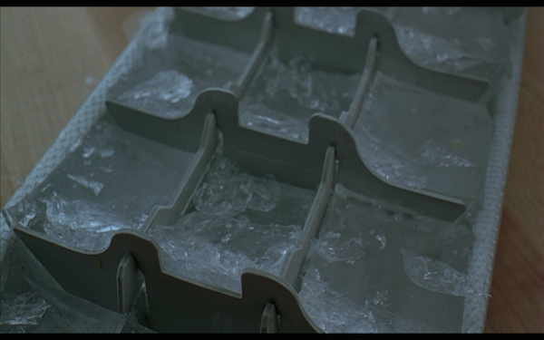 the ice storm - ice tray