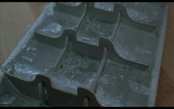 the ice storm - ice tray